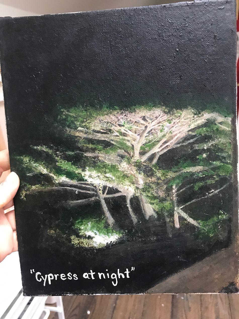 Cypress Tree at Night